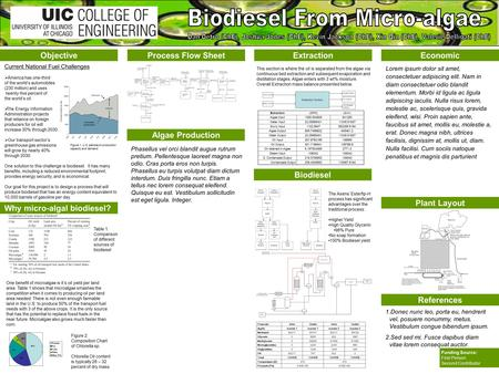 Objective Why micro-algal biodiesel? Process Flow SheetExtraction Biodiesel Economic References Funding Source: First Person Second Contributor Algae Production.