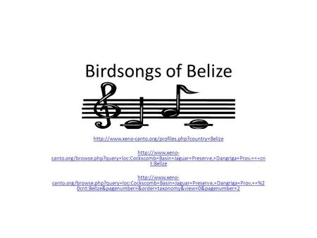 Birdsongs of Belize   canto.org/browse.php?query=loc:Cockscomb=Basin=Jaguar=Preserve,=Dangriga=Prov.==+cn.