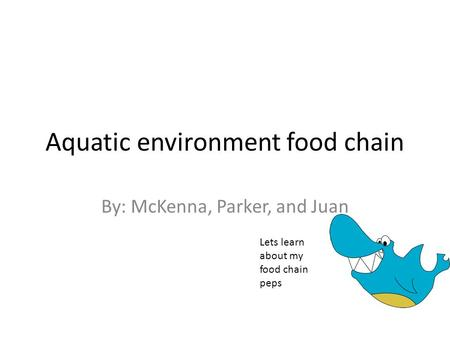 Aquatic environment food chain