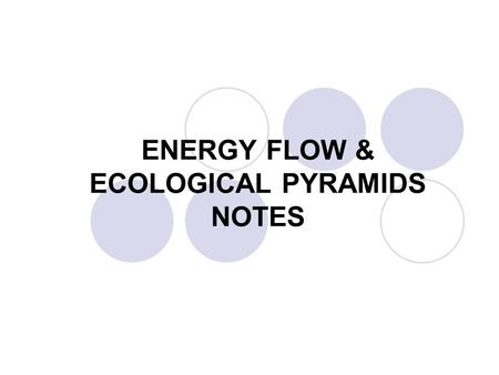 ENERGY FLOW & ECOLOGICAL PYRAMIDS NOTES. ECOLOGY DEFINITIONS Ecology – study of organisms and their interactions with the environment.