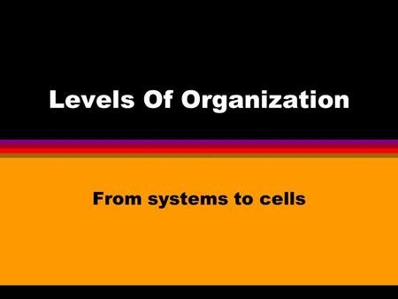 Levels Of Organization From systems to cells. Levels of organization l Atoms l Molecules l Cells l Tissues l Organs l Systems l Organisms l Populations.