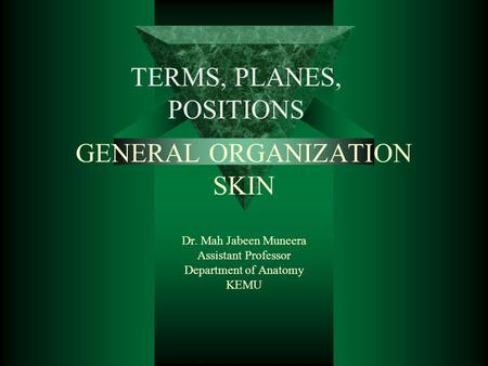 GENERAL ORGANIZATION SKIN Dr. Mah Jabeen Muneera Assistant Professor Department of Anatomy KEMU TERMS, PLANES, POSITIONS.