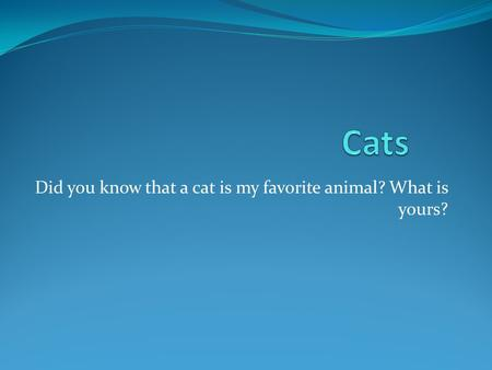 Did you know that a cat is my favorite animal? What is yours?