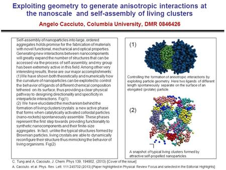 Exploiting geometry to generate anisotropic interactions at the nanoscale and self-assembly of living clusters Angelo Cacciuto, Columbia University, DMR.