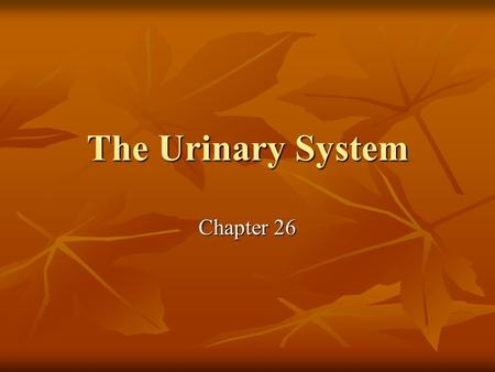 The Urinary System Chapter 26. Functions Regulating blood volume and blood pressure Regulating blood volume and blood pressure Regulated concentration.