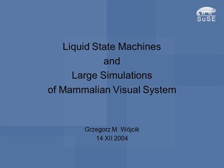Liquid State Machines and Large Simulations of Mammalian Visual System Grzegorz M. Wójcik 14 XII 2004.