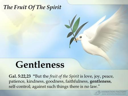 "Gentleness Gal. 5:22,23 "" But the fruit of the Spirit is love, joy, peace, patience, kindness, goodness, faithfulness, gentleness, self-control; against."
