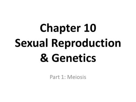 Chapter 10 Sexual Reproduction & Genetics Part 1: Meiosis.
