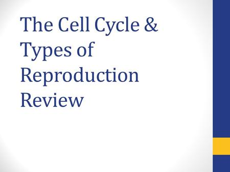 The Cell Cycle & Types of Reproduction Review. During which stage of mitosis are the chromosomes aligned across the middle of the cell?