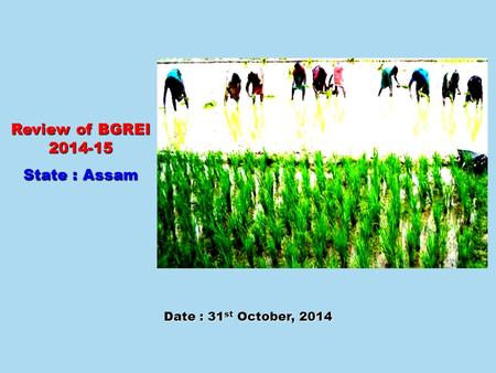 Review of BGREI 2014-15 State : Assam Date : 31 st October, 2014.
