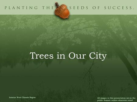 Trees in Our City Interior West Climate Region All images in this presentation are in the public domain unless otherwise noted.