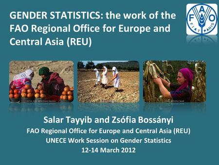 GENDER STATISTICS: the work of the FAO Regional Office for Europe and Central Asia (REU) Salar Tayyib and Zsófia Bossányi FAO Regional Office for Europe.