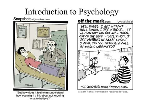 introduction to psychodynamic therapies Welcome to the child psychodynamic psychotherapy toolkit  video  introduction and expert commentary for each vignette by efrain bleiberg, md,  marty drell,.