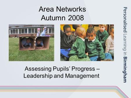 Area Networks Autumn 2008 Assessing Pupils' Progress – Leadership and Management.