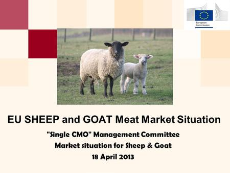 Single CMO Management Committee Market situation for Sheep & Goat 18 April 2013 EU SHEEP and GOAT Meat Market Situation.