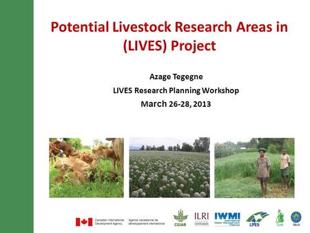 Potential Livestock Research Areas in (LIVES) Project Azage Tegegne LIVES Research Planning Workshop March 26-28, 2013.