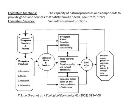 Ecosystem functions: The capacity of natural processes and components to provide goods and services that satisfy human needs. (de Groot, 1992) Ecosystem.