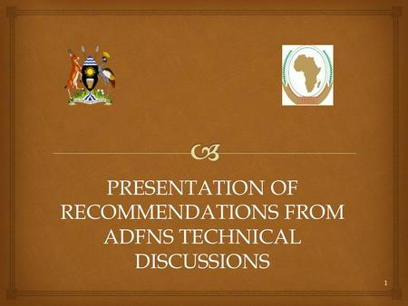 PRESENTATION OF RECOMMENDATIONS FROM ADFNS TECHNICAL DISCUSSIONS 1.