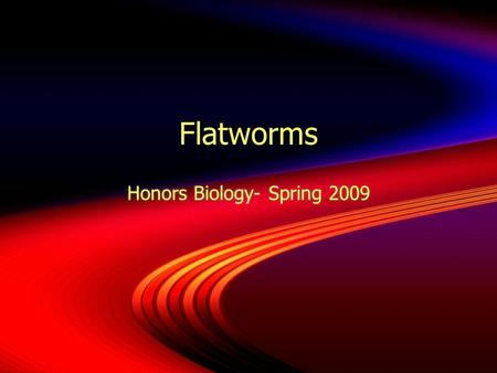 Flatworms Honors Biology- Spring 2009. Phylum Platyhelminthes  Soft, flattened bodies  Bilateral symmetry with cephalization.