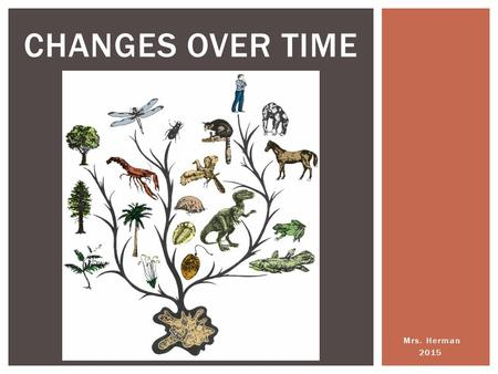 Mrs. Herman 2015 CHANGES OVER TIME. Evolution is the change over time in a population of related organisms. WHAT IS BIOLOGICAL EVOLUTION?