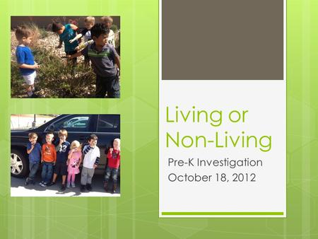 Living or Non-Living Pre-K Investigation October 18, 2012.