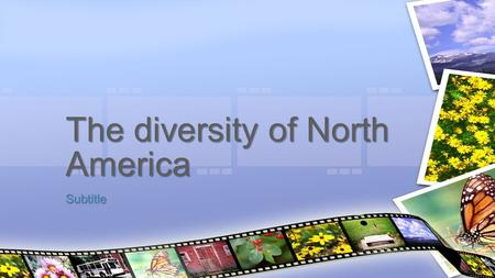 Subtitle The diversity of North America. Diversity The condition of having or being composed of differing elements : variety; especially : the inclusion.
