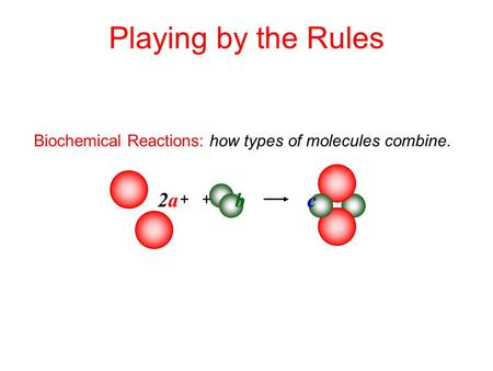 Biochemical Reactions: how types of molecules combine. Playing by the Rules + + 2a2a b c.