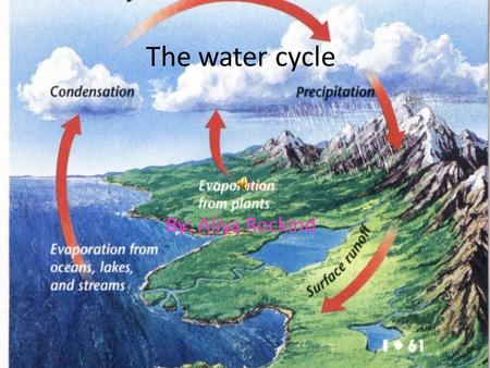 The water cycle By: Aliya Rockind Evaporation Evaporation is the first step in the water cycle. Evaporation happens when the sun heats the water and.