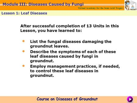 After successful completion of 13 Units in this Lesson, you have learned to: List the fungal diseases damaging the groundnut leaves. Describe the symptoms.