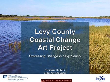 Expressing Change Goal: To creatively express the challenges and opportunities of the changing coast in Levy County Goal: To creatively express the challenges.