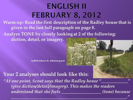 Warm-up: Read the first description of the Radley house that is given in the last full paragraph on page 8. Analyze TONE by closely looking at 2 of the.