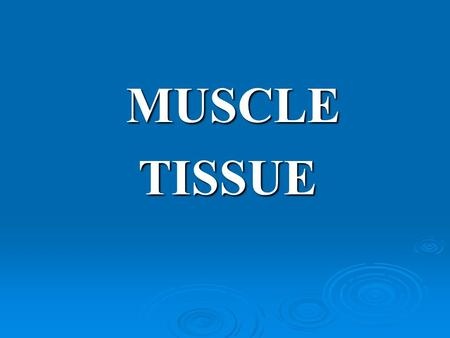MUSCLE MUSCLE TISSUE TISSUE. Myology  Anatomical study of muscles is called myology  Mostly myology is concerned with skeletal muscles  Together with.