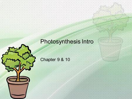 Photosynthesis Intro Chapter 9 & 10.
