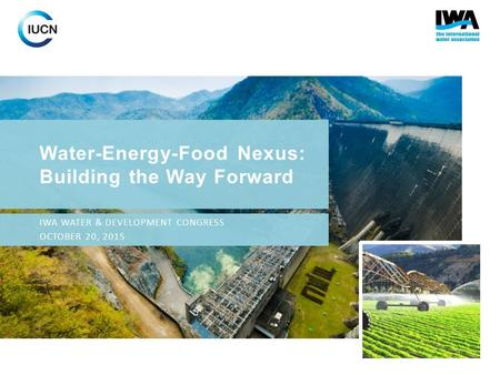 Water-Energy-Food Nexus: Building the Way Forward