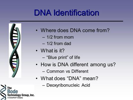 "DNA Identification Where does DNA come from? –1/2 from mom –1/2 from dad What is it? –""Blue print"" of life How is DNA different among us? –Common vs Different."