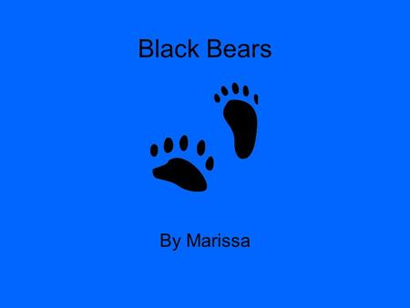 Black Bears By Marissa. Table of contents 1 Babies 2 Food 3 Habitat 4 Enemies 5 Description 6 Communication 7 Interesting facts 8 Would this animal make.