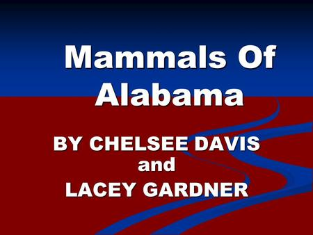 Mammals Of Alabama BY CHELSEE DAVIS and LACEY GARDNER.