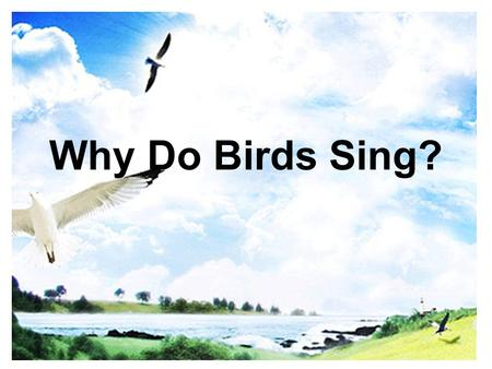 Why Do Birds Sing?. * Today's learning aims We can learn the expressions of asking permission We can learn the expression of refusal and consent We can.