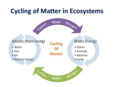 Cycling of Matter in Ecosystems. Recycling Matter All life on Earth requires water and nutrients These particles of matter don't remain in your body forever.
