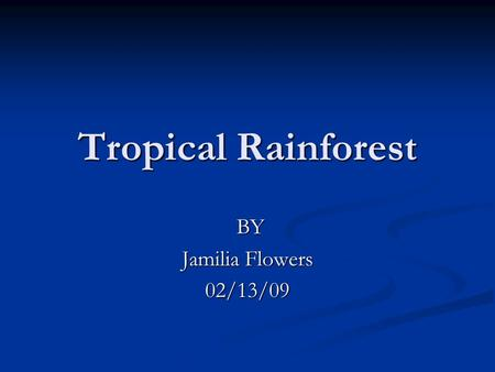 Tropical Rainforest BY Jamilia Flowers 02/13/09.