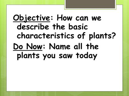 Objective: How can we describe the basic characteristics of plants? Do Now: Name all the plants you saw today.
