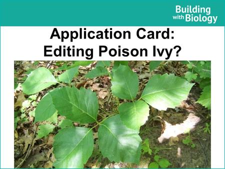 Application Card: Editing Poison Ivy?. Application Card: Editing Poison Ivy? Why do it Poison ivy is an irritating plant that causes a painful rash to.