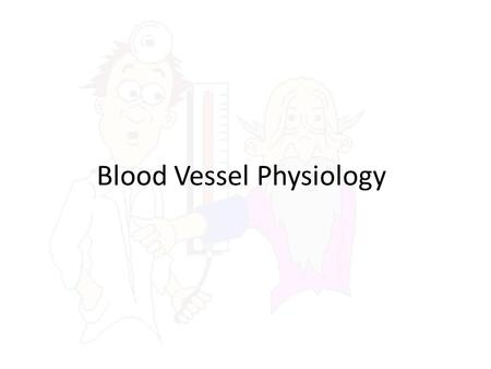 Blood Vessel Physiology