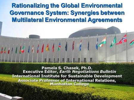 Rationalizing the Global Environmental Governance System: Synergies between Multilateral Environmental Agreements Pamela S. Chasek, Ph.D. Executive Editor,