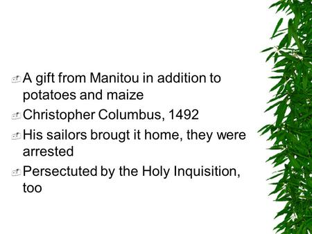  A gift from Manitou in addition to potatoes and maize  Christopher Columbus, 1492  His sailors brougt it home, they were arrested  Persectuted by.