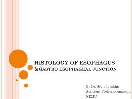HISTOLOGY OF ESOPHAGUS &gastro esophageal junction