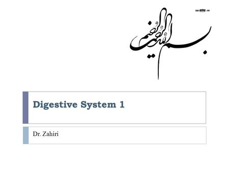Digestive System 1 Dr. Zahiri. Pharynx Dr. Maria Zahiri  Pharynx is a transitional zone between oral cavity and esophagus and trachea  It is lined by.