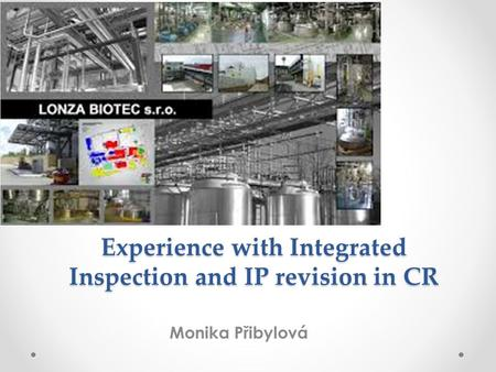 Experience with Integrated Inspection and IP revision in CR Monika Přibylová.