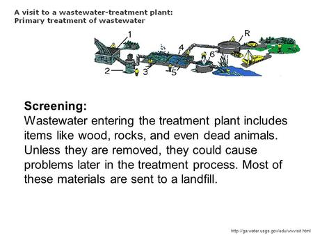 Screening: Wastewater entering the treatment plant includes items like wood, rocks, and even dead animals. Unless they are removed, they could cause problems.