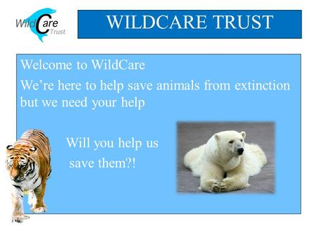 Welcome to WildCare We're here to help save animals from extinction but we need your help Will you help us save them?! WILDCARE TRUST NEXT.